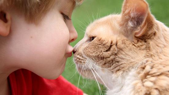 Болезни, передающиеся от животного к человеку