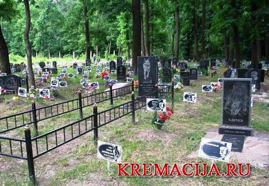 Где похоронить домашнее животное