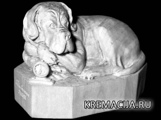 Где заказать кремацию собаки или кошки
