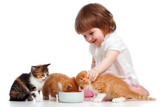 Котята и дети