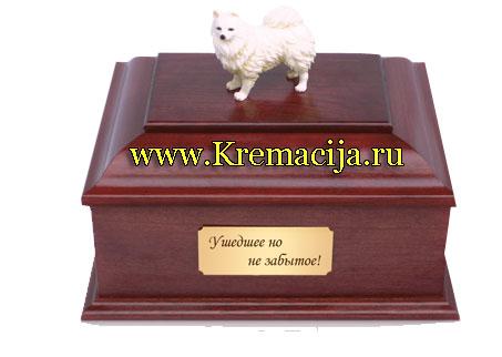 Общая и индивидуальная кремация животных