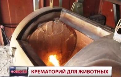 Крематорий для кошек и собак