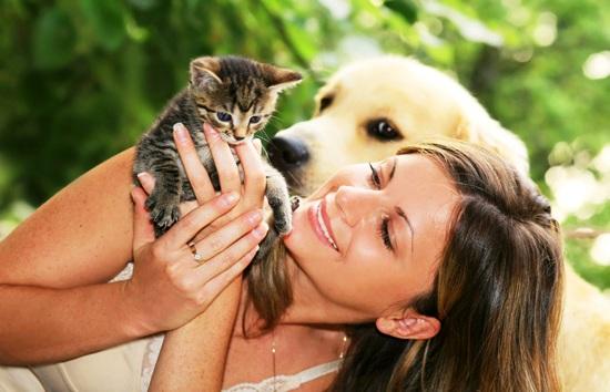 Любите животных