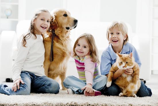 Игры детей и домашних животных